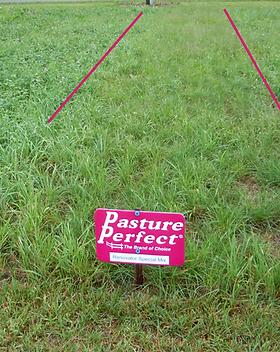 Pasture Perfect Renovator.png