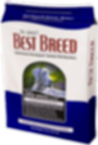 BBR Large Breed.png