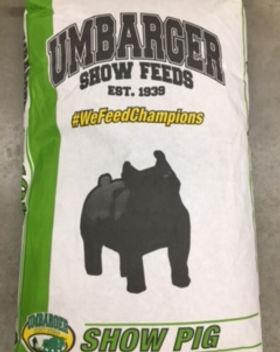 Umbarger Hog 2.JPG