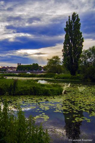 CHÂLON-sur-SÂONE_,_cathédrale_Saint-Vinc