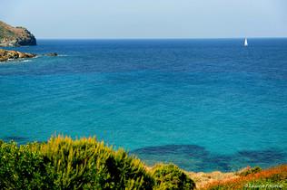 Corsica Century (incitation au farniente