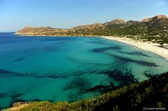 Corsica Ostriconi (la baie).JPG