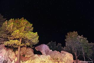 Corsica Piana (chien en pierre).JPG