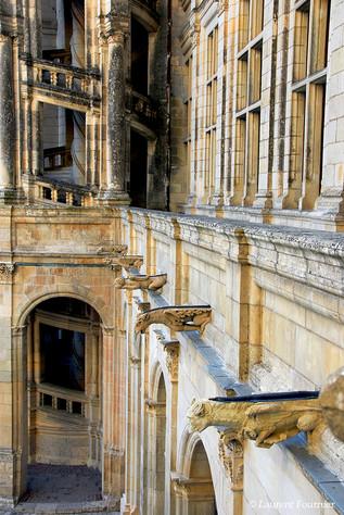 Chambord_(gargouilles_&_escaliers_en_col