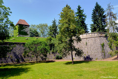 BEZAK Tour Montmart au printemps.JPG