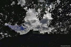 BEZAK_Citadelle_dans_les_arbres_.jpg