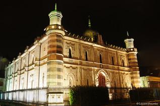 BEZAK la synagogue quai de Strasbourg.JP