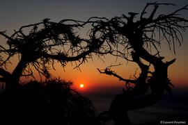 Corsica Piana (soleil rouge).JPG