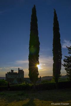 Beynac_(Dordogne)_Château_&_2_peupliers.