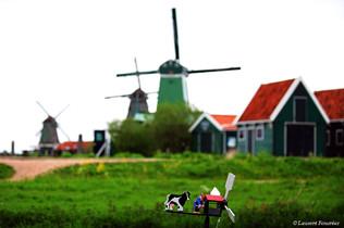 Amsterdam (moulin miniature).JPG