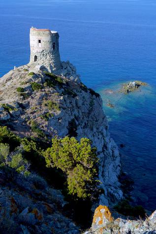 Corsica cap Corse (torre di Agnello).JPG