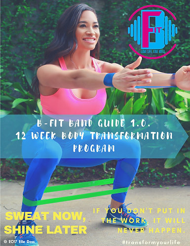 B-Fit: IGNITE Your Thirst For Fitness (Guide Only)