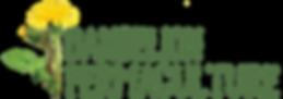 dandelion_permaculture_logo_full_colour.