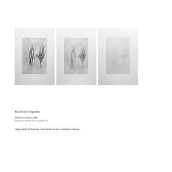 catalogue maquette A DESSIN4 29 oct-page