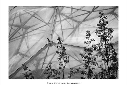 Eden Project (Landscape)
