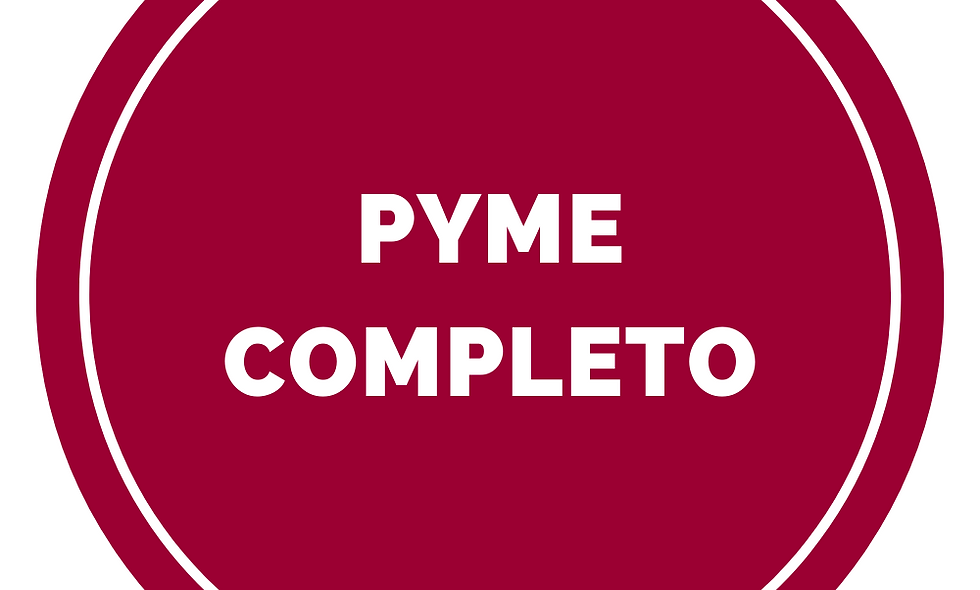 PYME COMPLETO