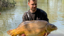 Lots of recent carp catch shots from Lac Du Coron