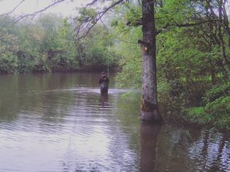 Fishing Slows Up As Spawning Starts