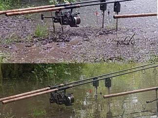 June 9th - 16th 2018, rain, carp, rain and more carp!