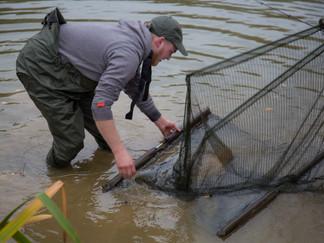 Fish Care @ Lac Du Coron