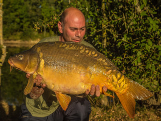 Sun drenched stunner from the aerator