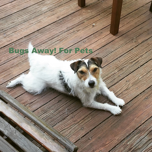 Bugs Away! Flea and Tick control for pets