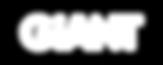 White Logo on Transparent BG.png