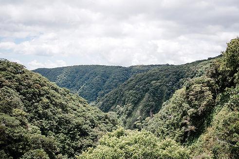 Valle Escondido Areas 175_websize.jpg