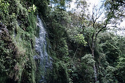 Valle Escondido Areas 160_websize.jpg