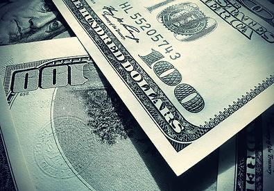 5.1. Values ECONOMIC VALUE.jpg