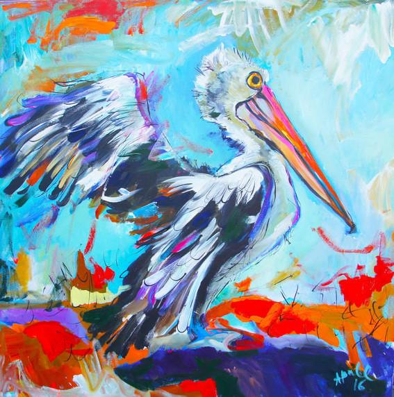 Woy Woy Pelican