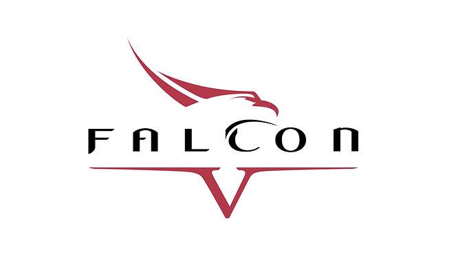falcon v logo for web .jpg
