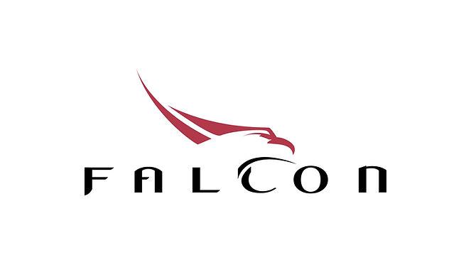 falcon logo for web.jpg