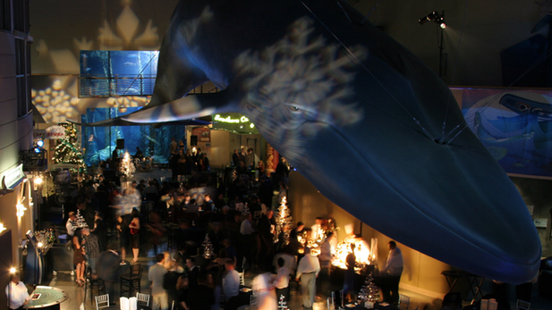 SpaceX Holiday Party