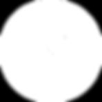 NEV_Flashlink_icon_white_150x150px-1.png