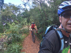 Trail action