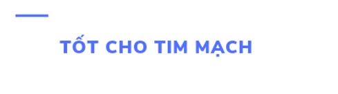 Tot-cho-tim-mach