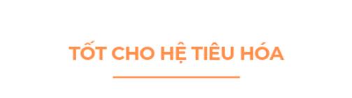 Tot-cho-he-tieu-hoa