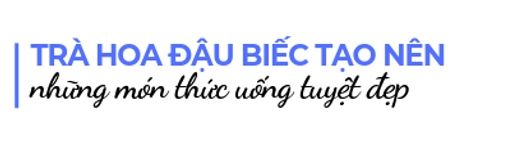 Tra-dau-biec-tao-nen-nhung-thuc-uong-tuyey-dep