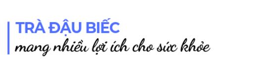Tra-dau-biec-mang-nhieu-loi-ich-cho-suc-khoe
