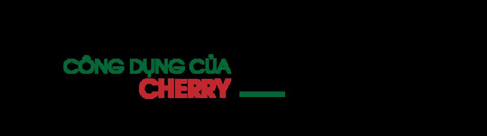 cong-dung-cua-cherry