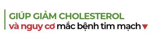 Giup-giam-cholesterol-va-nguy-co-mac-benh-tim-mach