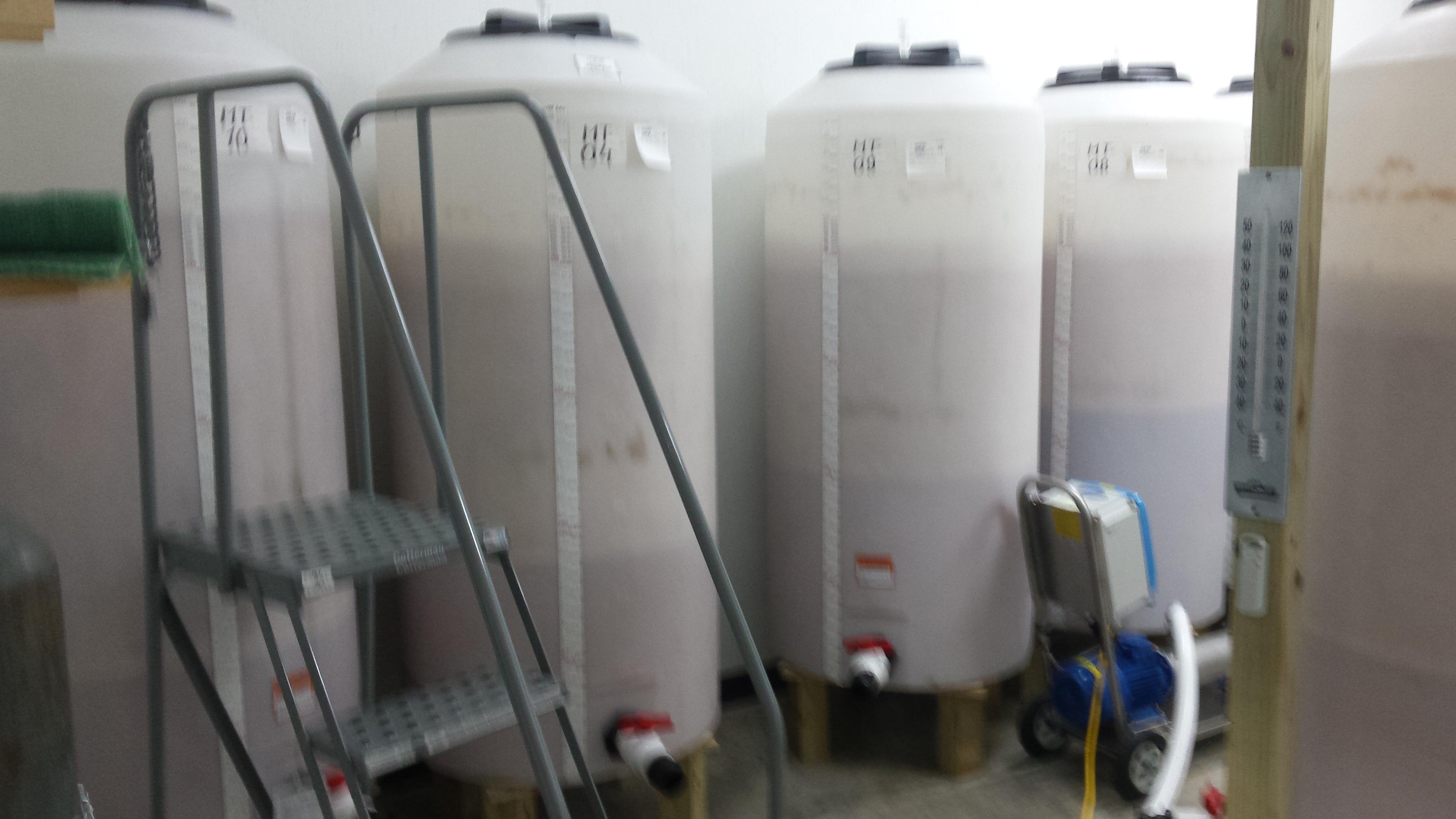 Mash is fermenting