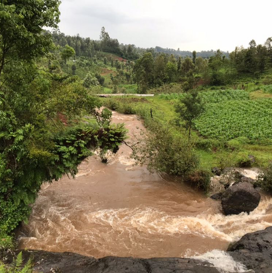 River currents bring power to over 250 households