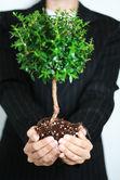 Evironmental Nonprofit