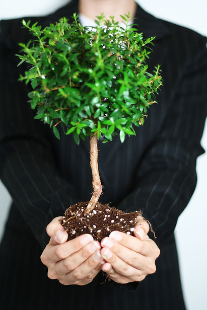 A man holding a tree, with roots, in the palm of his hand