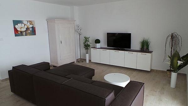 Living Room Casa Slanica.jpg