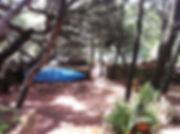 thumbnail_IMG-20200318-WA0019.jpg