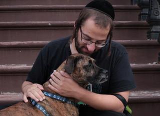 Judeus Podem ter Cachorro?