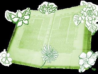Talmud - O Mistério do Livro das Genealogias